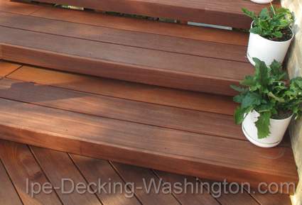 Cumaru Decking in Washington